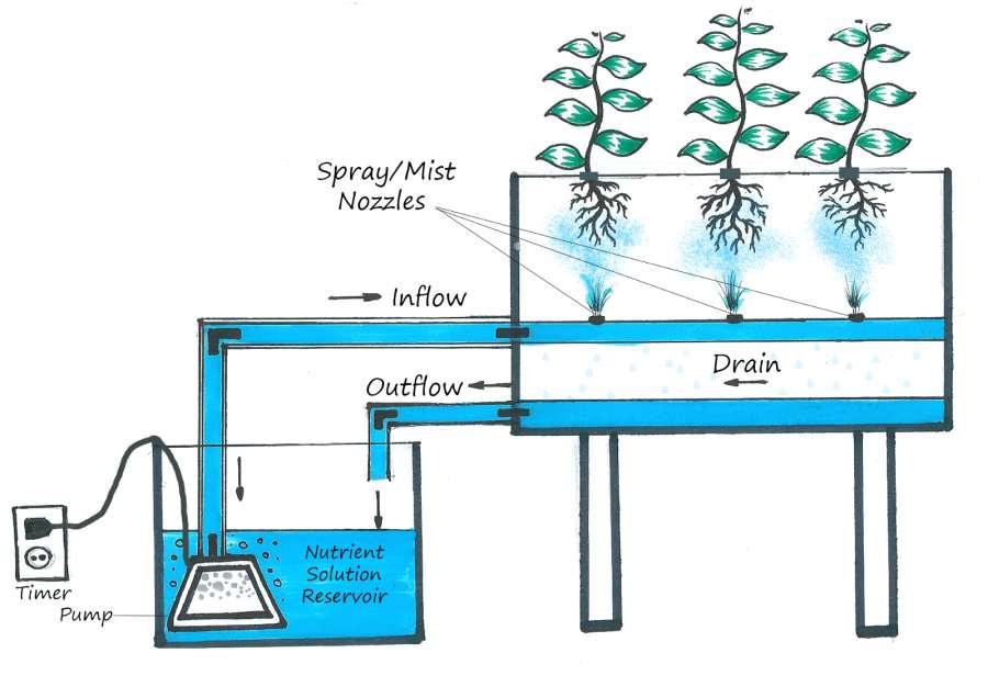 Aeroponic sprayer system