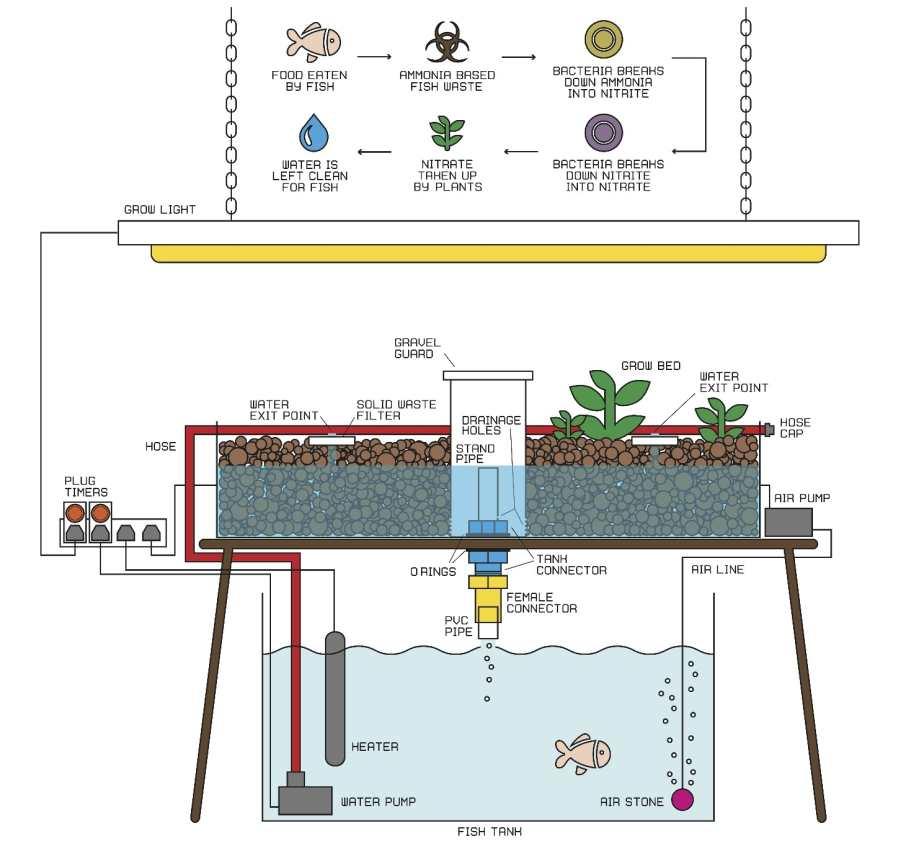 Akvaponijski sustav