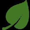 Zelena Stanica