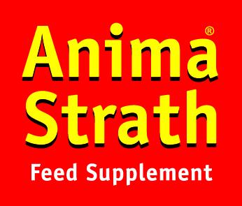 Anima-Strath